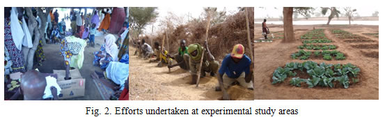 Fig.2. Efforts undertaken at experimental study areas