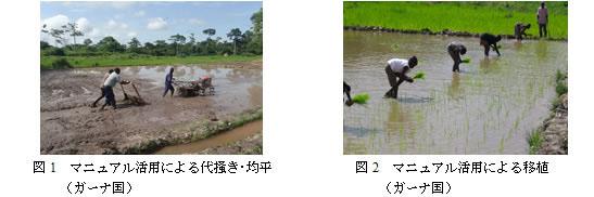 図1 マニュアル活用による代掻き・均平(ガーナ国)