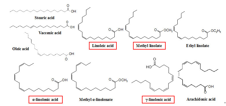 Fig. 1. Structure formulae of various fatty acid and fatty acid ester. Substance with an enclosure has nitrification inhibitory activity.
