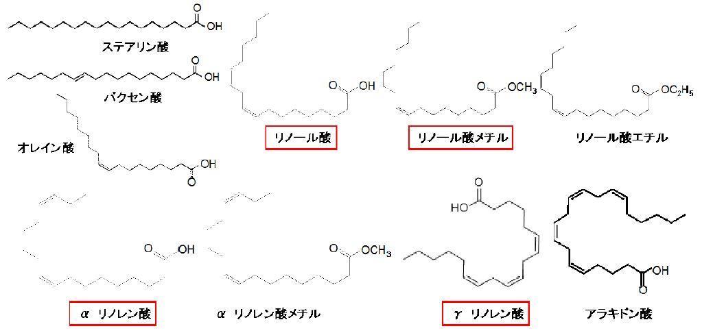 図1 各種脂肪酸および脂肪酸エステル(囲みのある物質に活性あり)