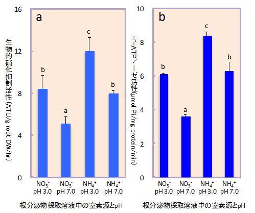 図1 ソルガムの生物的硝化抑制活性(a)および細胞膜H+-ATP アーゼ活性(b)に及ぼす根分泌物採取溶液の窒素源とpHの影響(水耕栽培)