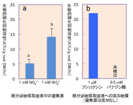 図3 ソルガムの生物的硝化抑制活性に及ぼす窒素源(a)とH+-ATP アーゼの活性促進物質フシコクシンおよび活性阻害物質バナジン酸(b)の添加の影響(水耕栽培、根分け法)