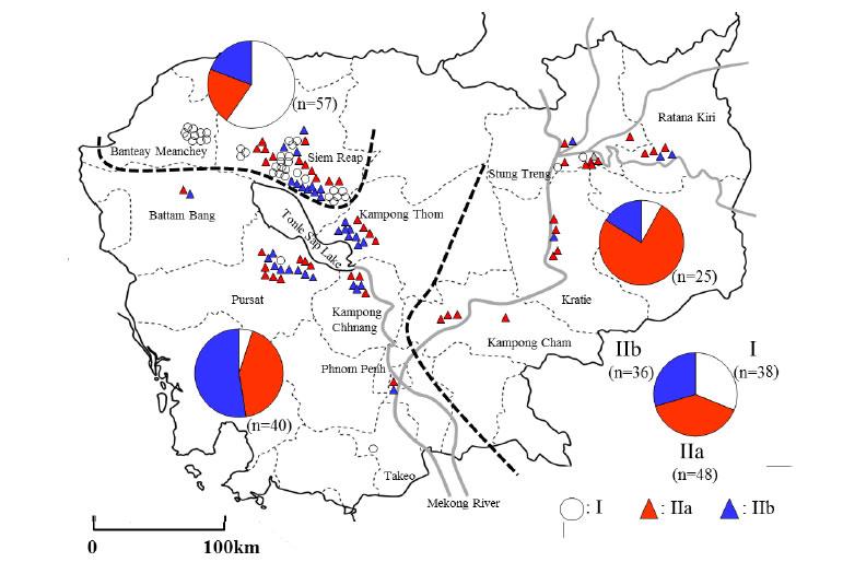 Fig. 2. Distribution of blast isolates, classified into three groups--I , IIa, and IIb--in Cambodia.