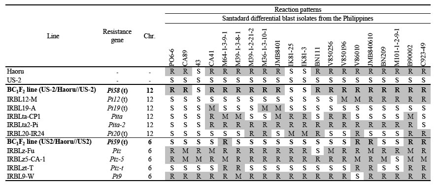 Table 1. Reaction patterns of Haoru and segregation lines harboring new resistance genes to standard differential blast isolates