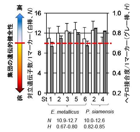 図2 推定された両種の遺伝的多様性レベル