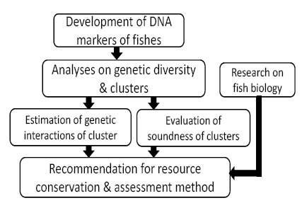 Fig. 4. Significance in usage of DNA markers for resource conservation & sustainable exploitation.