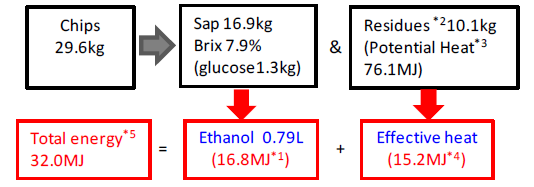 Fig. 1. Energy flow in ethanol production and in sap-squeezed residues.