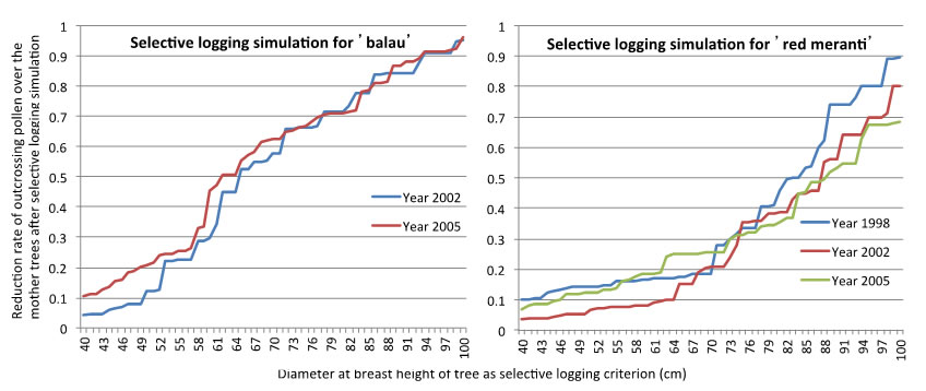 Fig. 2. Reduction rate of outcrossing pollen over the mother trees after selective logging simulation with every 1cm increment of cutting limit from 40 to 100cm (below).