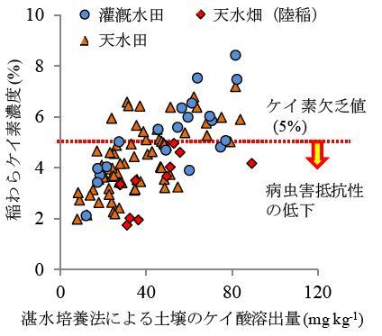 図2 土壌のケイ酸溶出量と稲わらケイ素濃度との関係