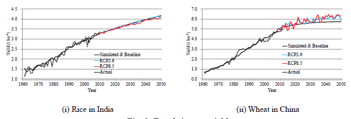 Fig. 2. Trends in crop yield