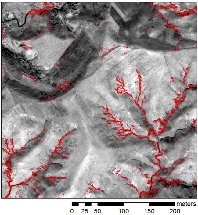 図2 選択して地上測量したガリーの位置(矩形部は、図1の範囲)