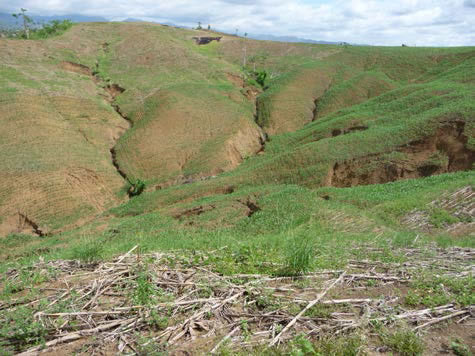 Photo 1. Gully erosion appears at the study site near Ilagan City, Isabela Province, Philippines(taken on November 23, 2010)