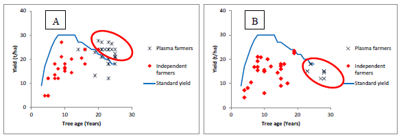 Fig. 1. Relationship between tree age and fresh fruit bunch (FFB) yield (left: Company A case study, right: CompanyB case study).