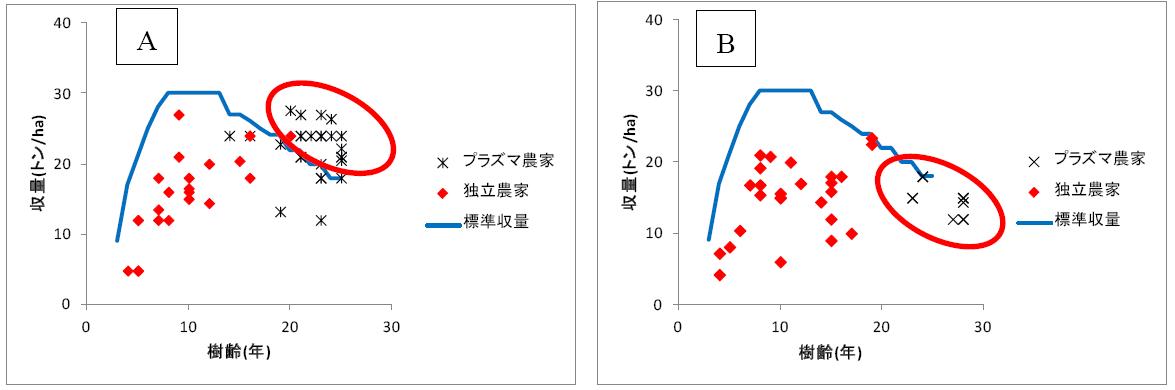 図1 オイルパーム樹齢と果房収量の関係(A:A社事例、B:B社事例)