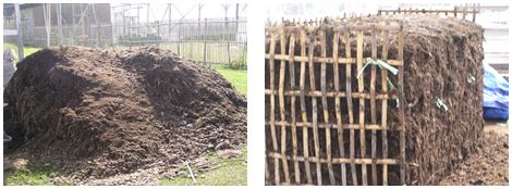 Fig. 1. Horse manure production