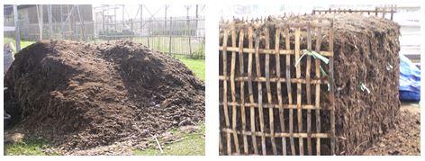 馬糞堆肥の製造過程