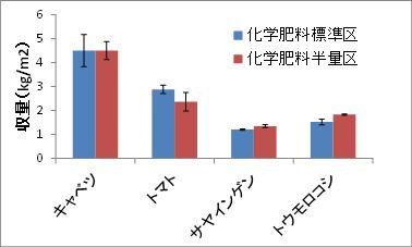 試験圃場における化学肥料標準施用区-化学肥料半量区の作物収量の比較