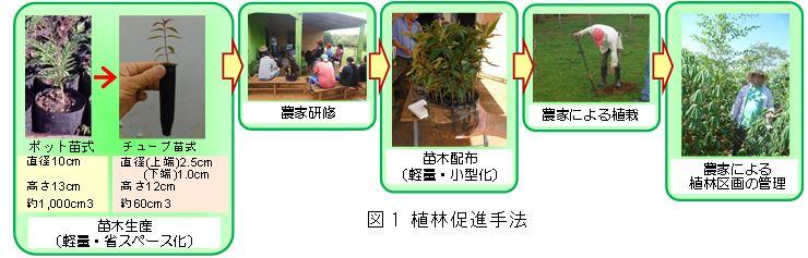 図1 植林促進手法