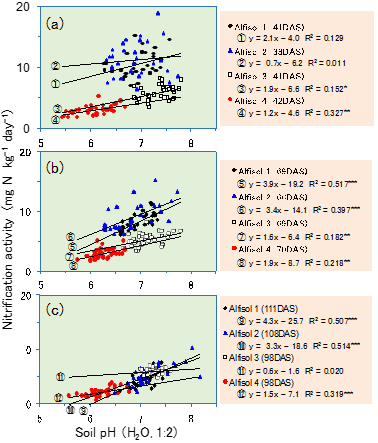 Fig. 2. Relationship between nitrification activity and soil pH (H2O, 1:2) of rhizosphere soil in each sampling (early (a), middle (b), and late (c) stage of growth) DAS:days after sowing