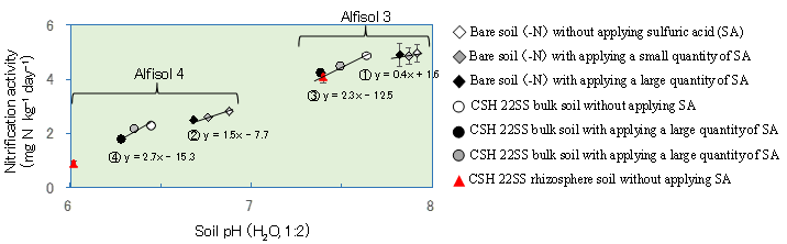 Fig. 3. Effects of soil pH modification on nitrification activity