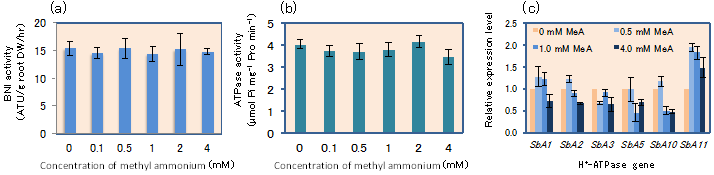 Fig. 3. The effect of methyl-ammonium (MeA), a non-metabolizable analogue to NH4+, on BNI release (a), the H+-ATPase activity (b), and the expression of the H+-ATPase genes in sorghum roots (c)