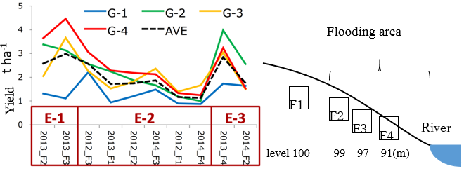Fig. 1. Average yields of genotype groups across environment groups. G: Genotype by cluster analysis, E: Environment group