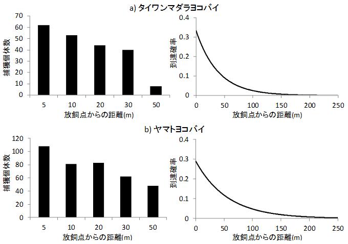 図3 トラップで捕獲された放飼虫の距離別頻度分布例(左)と任意の距離までの到達確率分布(右)