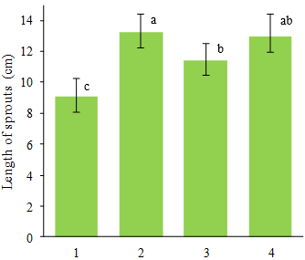 Fig. 2. The length of soybean sprouts treated by slightly acidic electrolyzed water (SAEW) after five days of germination