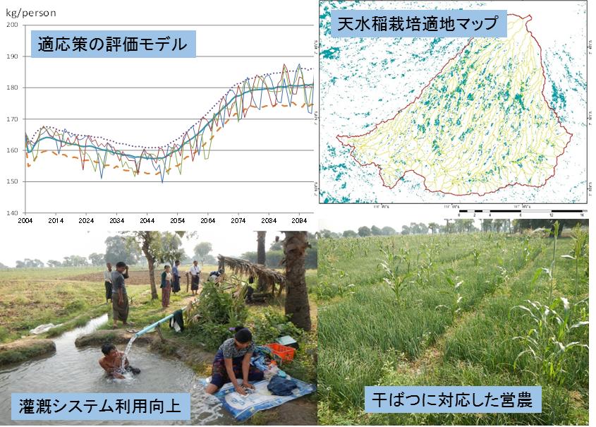 図2 気候変動適応策の検討