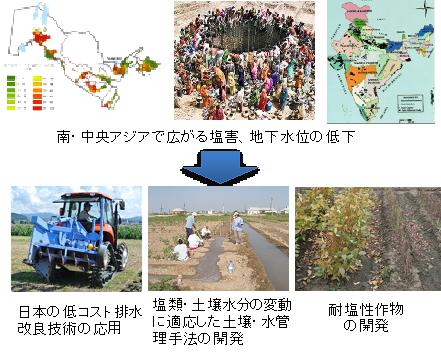 乾燥、塩害地等の水利用制限地域における資源保全管理技術の開発