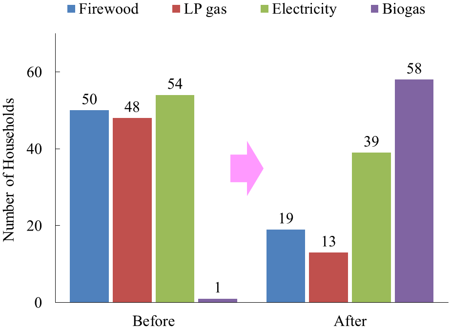 Fig. 2. Changes in cooking fuel usage before and after biogas digester (BD) installation