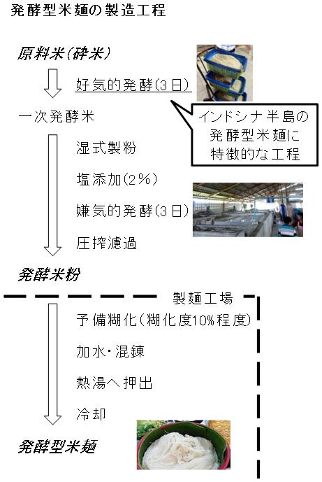 図1 タイの発酵型米麺 カノムチーンの製造工程