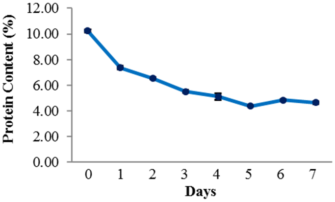Fig. 2. Changes in protein content of rice during fermentation.