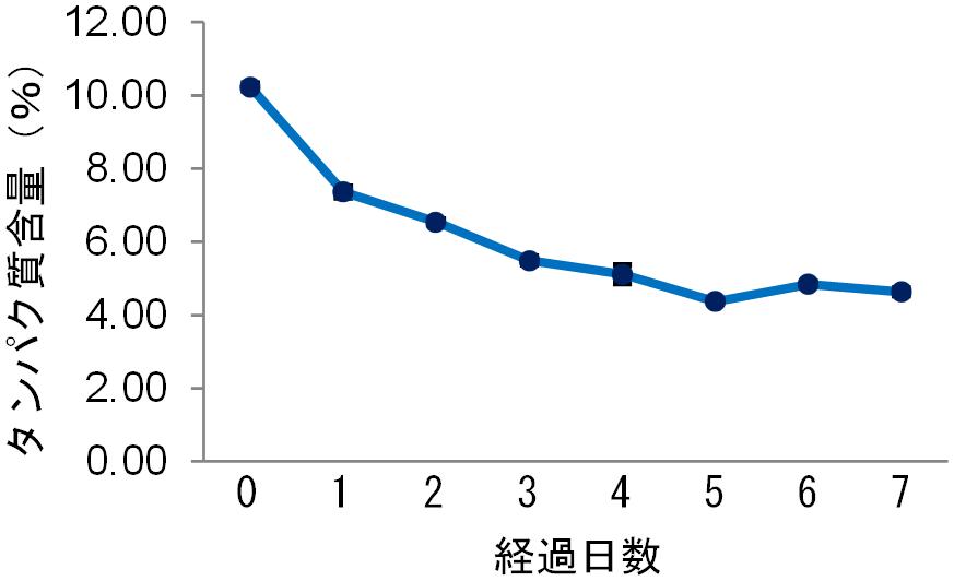 図2 発酵過程とタンパク質含量