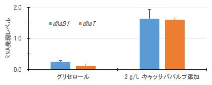 図3 リアルタイムPCRで確認したキャッサバパルプ添加(10時間後)による律速酵素グリセロール脱水酵素(dhaB2)と1,3-PD 脱水素酵素 (dhaT)のmRNA発現レベル。