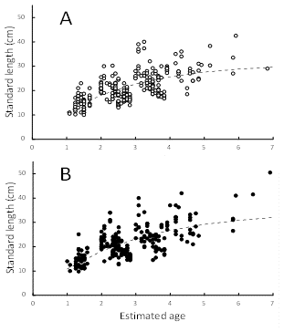 Fig. 2. Growth models of Pa koh (A: female; B: male)