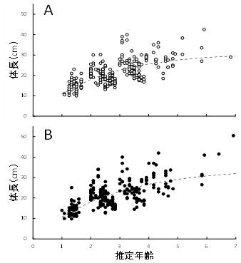 図2.パ・コーの成長モデル(A:メス、B:オス)