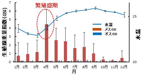 図3.パ・コー雌雄の生殖腺重量指数(GSI)と水温の季節変化