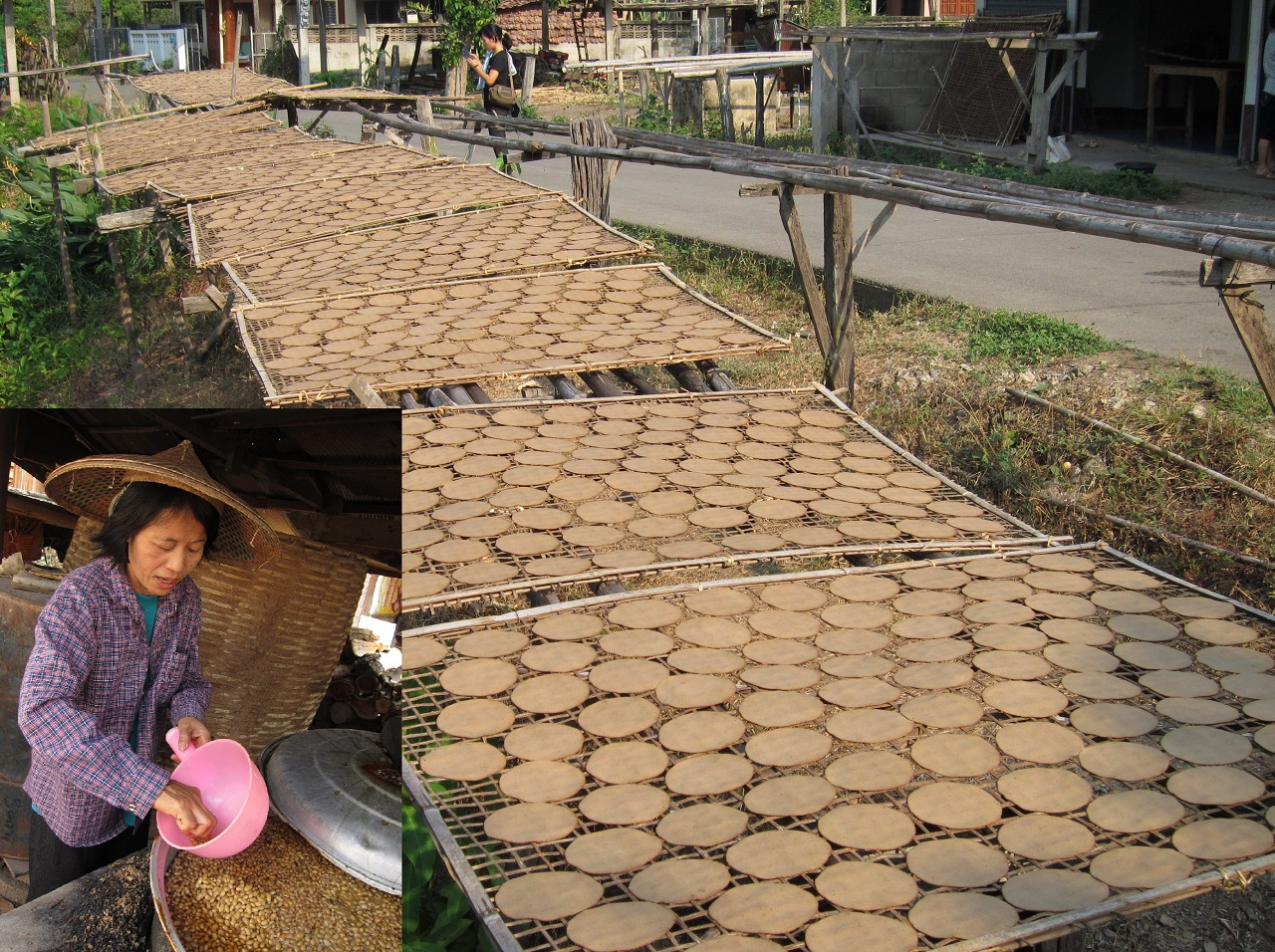 "Fig.3. Another type of fermented soybean ""tua-nao"" left to dry in the sun in Thailand"