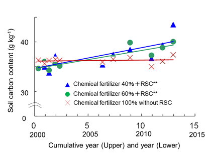 Fig. 4. Change in total carbon (g kg-1) in the soil (0–10 cm) in the experimental paddy.