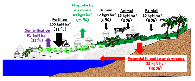 Fig. 3. Estimated nitrogen balance using nitrogen load to ground surface in the research area