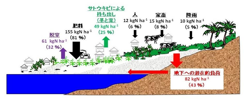 図3 対象地域における地表面への窒素負荷量から求めた窒素収支