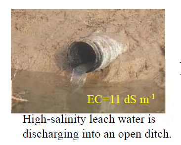 Fig. 2. Outlet of collecting drain