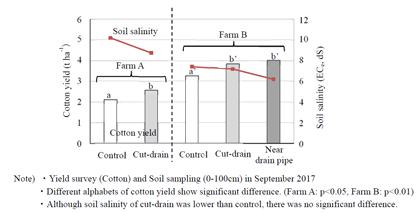 Fig. 3. Crop yield and soil salinity in the field with shallow subsurface drainage