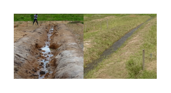 Fig. 3. Test canal 6 months after installing