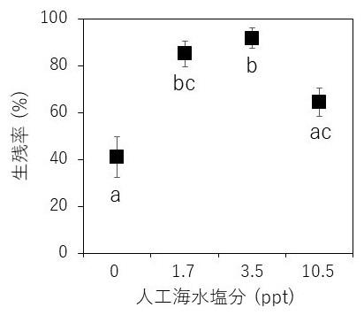 図2 塩分0~10.5 pptの人工海水で飼育したM. yui浮遊幼生の着底まで(約24日間)の生残率