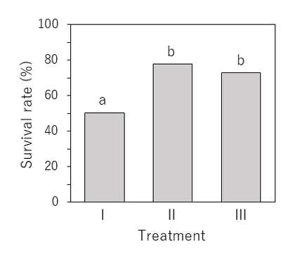 Fig. 3. Survival rates of postlarvae during the 2 weeks after settling to the bottom, in three treatment groups.