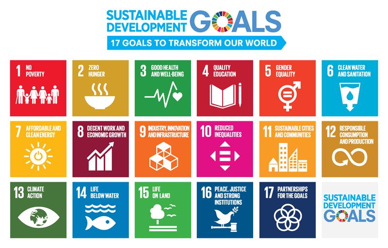 Sustainable Development Goals: SDGs