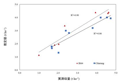 図2 ORYZAによる播種時期別収量予測精度