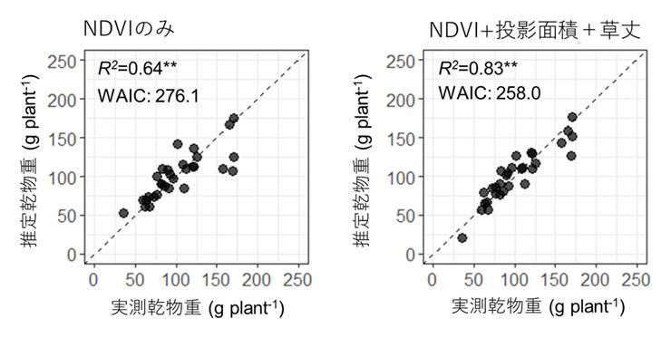 図3 横からの投影面積と草丈の値を加えることによる推定精度の改善